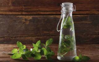 Рецепты домашних настоек из мяты и мелиссы