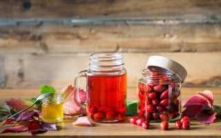 Настойка шиповника: польза, вред, рецепты