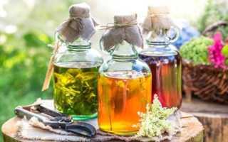 Настойка каланхоэ — рецепты, приминение, польза и вред