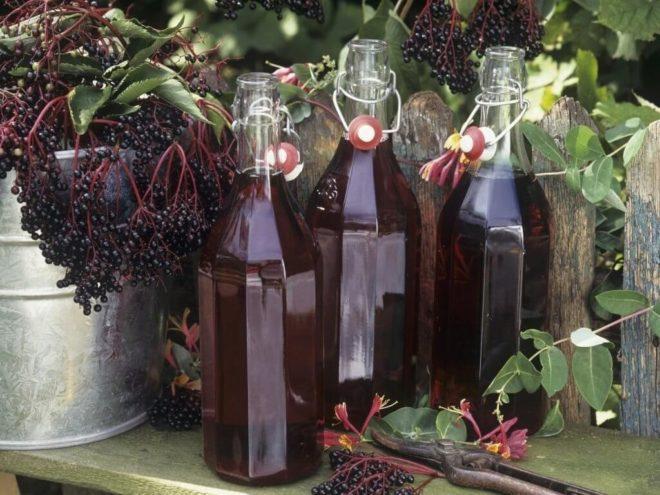 Как поставить настойку из черноплодной рябины