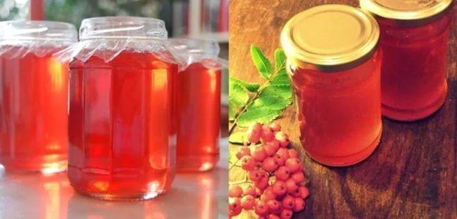 Рецепт настойки из красной рябины на водке (спирту, самогоне)