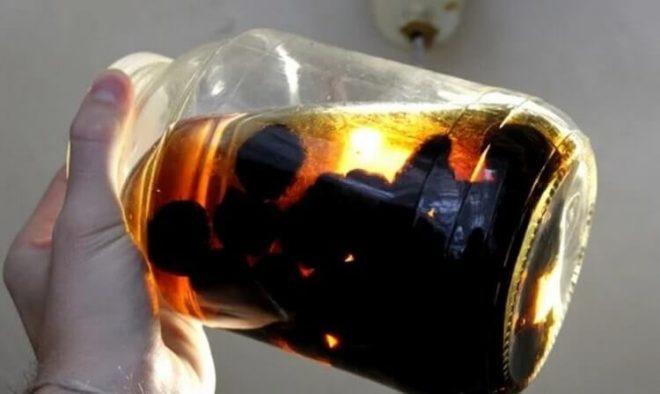 Настойка из чернослива на спирту